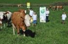 Pobaschnig-bio-award-kaernten-2014-05
